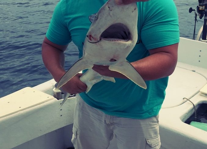 Man in hat holding large shark-like fish from deep sea fishing